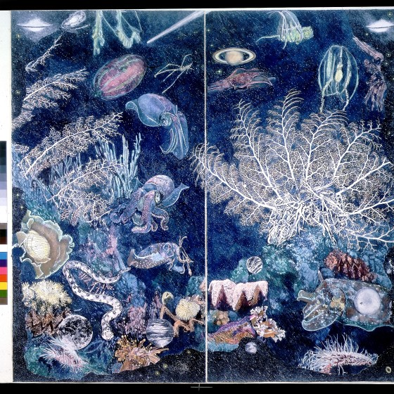 4-Night-Sea-lithograph-edit