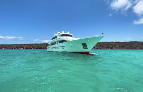 Your Own Private Excursion in the Galapagos Islands !